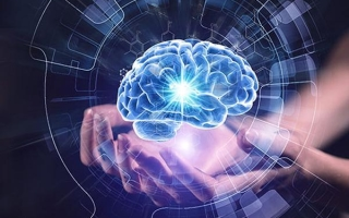 Возможности мозга человека