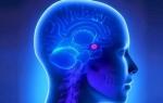 Чем опасна киста гипофиза головного мозга