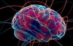 Признаки и методы лечения лейкоэнцефалопатии головного мозга