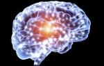 Демиелинизирующий процесс головного мозга: что это такое, признаки, лечение