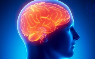Синдром Крейтцфельдта – Якоба