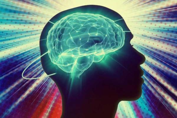 правильная работа мозга