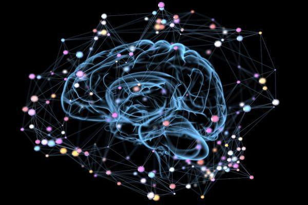 нейронные связи мозга