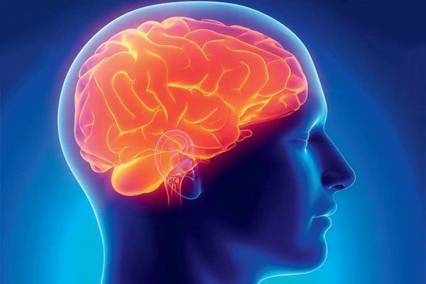 патология мозга