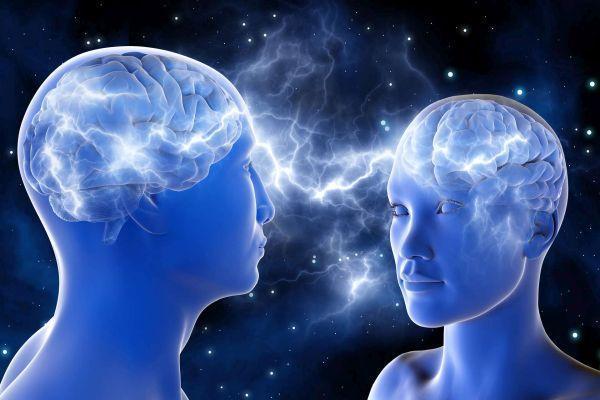 мозг мужской и женский