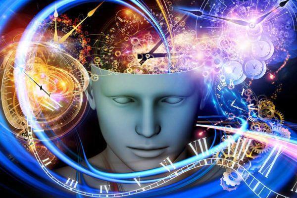 образы в мозге