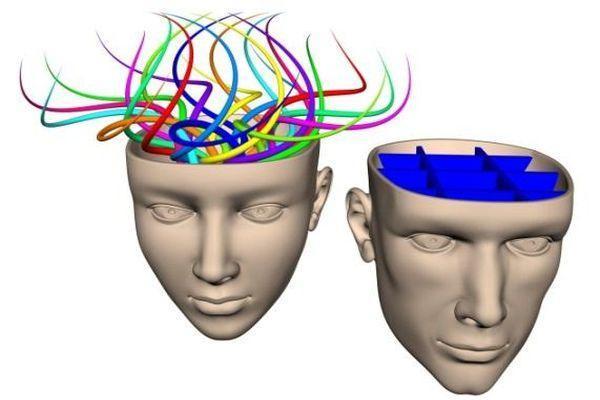 различия в головном мозге