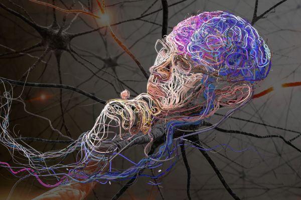 нейрональные сети