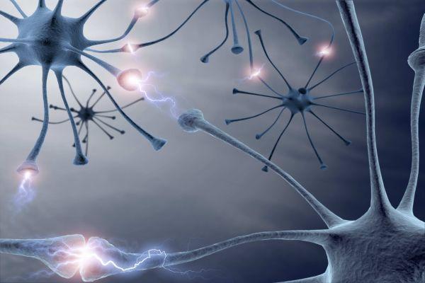 нейронные импульсы