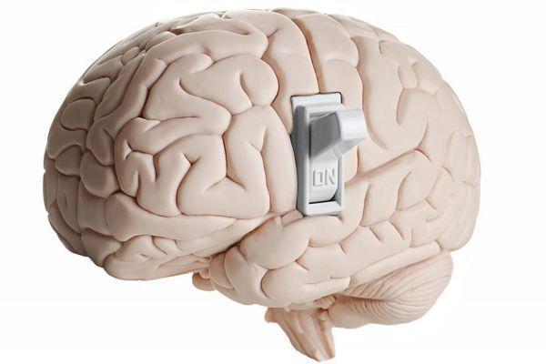 включение мозга