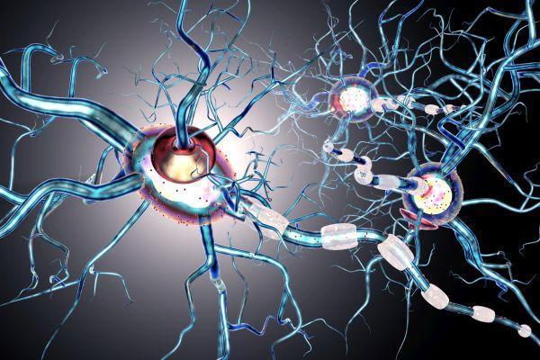 патология нервных клеток