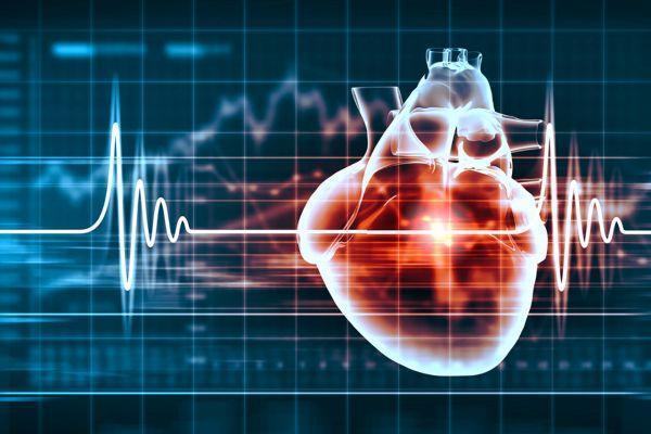 сердце с кардиограммой