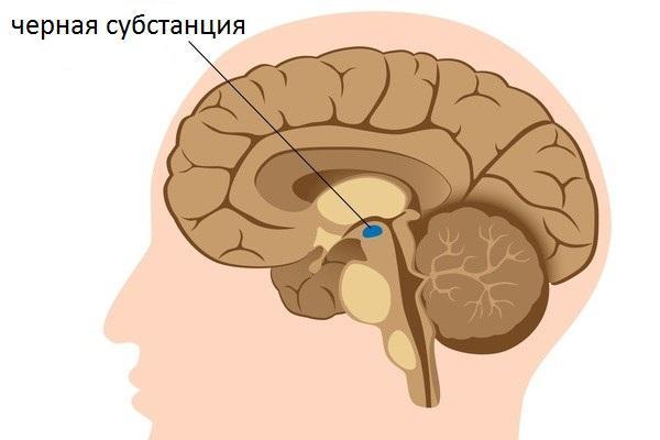 черное вещество в мозгу