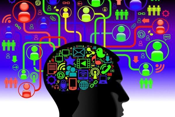 мозг информация