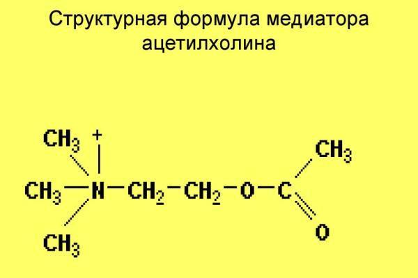 ацетилхолин структура